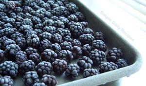 frozen-blackberries-artimg